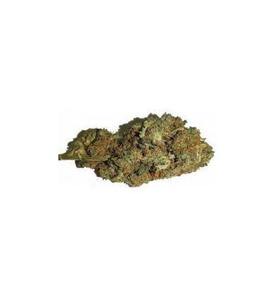 Fleur de CBD - Orange Bud 1g