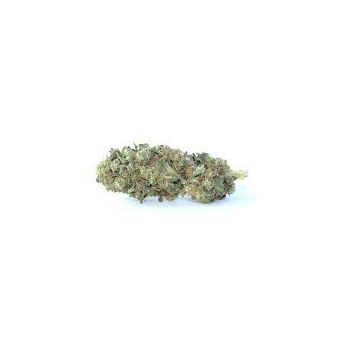 Strawberry Haze (CBD 3,5% - CBG 0,1% - THC0.2%) (1g)