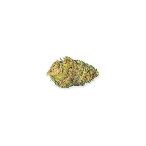 Sweet Mango  (CBD 4% - CBG 0,1% - THC 0.2%) (1g)